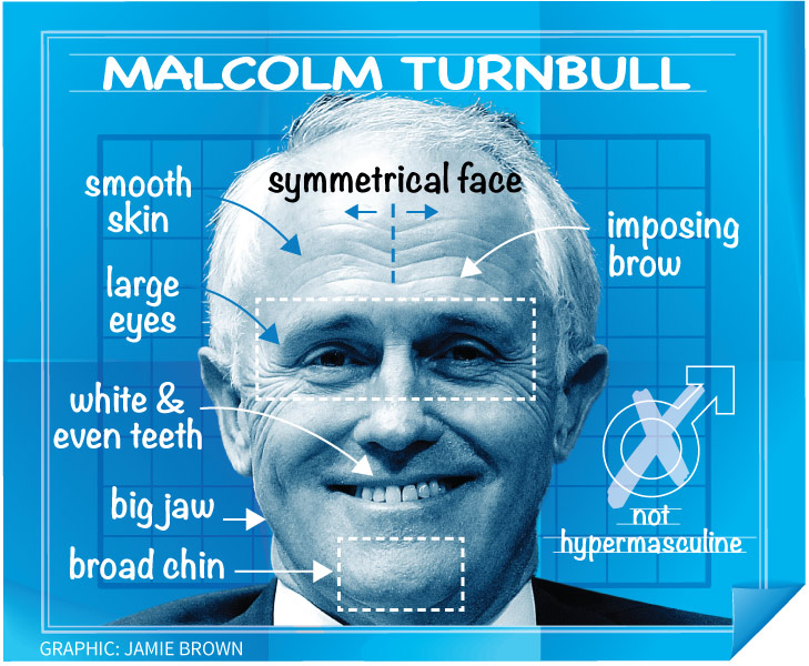 Diagram of Turnbull's face.